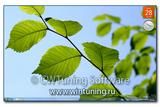 WinTuning 7: Программа для настройки и оптимизации Windows 10/Windows 8/Windows 7 - Скрыть все элементы с рабочего стола